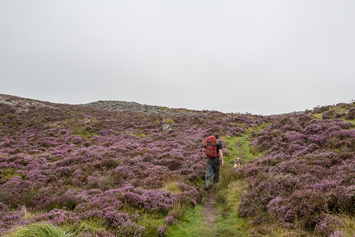 Beacons way wild camp (93 of 244)